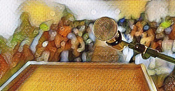The Difference Between Comedy Speeches And Stand-up Comedy